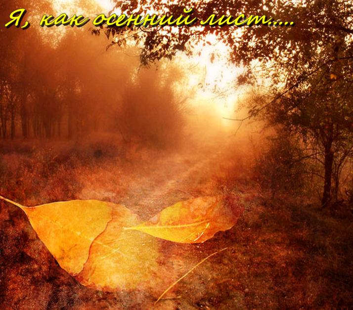 Коллаж -Осень